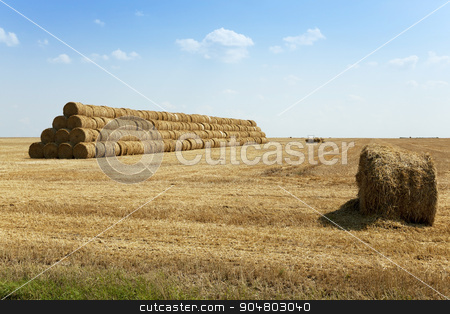 Stack of straw . summer stock photo,  an agricultural field where harvested cereals and straw collected in a stack. summer by ihar leichonak