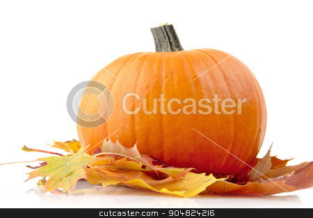 Decoration of pumpkin with autumn leaves for thanksgiving day on white stock photo, Decoration of pumpkin for thanksgiving day with autumn leaves isolated on white background by Tadeusz Wejkszo
