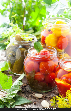 Preserved vegetables stock photo, preserved tomatoes,cucumbers,peppers and pattinson in jars by Jon88