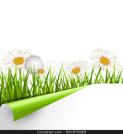 Green grass lawn with white chamomiles and wrapped paper sheet i stock vector clipart, Green grass lawn with white chamomiles and wrapped paper sheet isolated on white. Floral nature flower background by Makkuro_GL