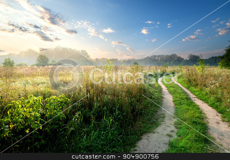 Fog over country road stock photo, Fog and sky over country road in the field by Givaga