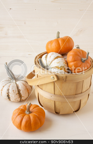 Miniature Pumpkins stock photo, A basket of white and orange miniature pumpkins.  by AntoniaLorenzo