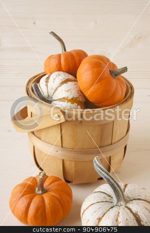 Miniature Pumpkins stock photo, A basket of white and orange miniature pumpkins.  by AntoniaLorenzo
