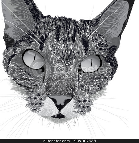 head of a cat stock vector clipart, Illustration head of a cat by ElemenTxD