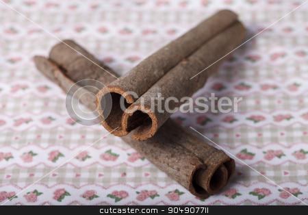 decorative tube bark stock photo, sticks tree bark on a colorful background by HOMON OLEKSANDR