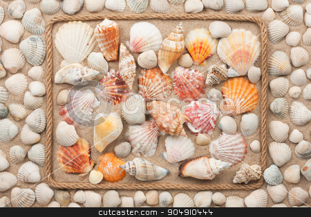 Beautiful frame of rope and sea shells on the sand stock photo, Beautiful frame of rope and sea shells on the sand, with place for your image, text by alekleks