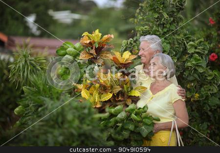 Elderly couple  in tropical garden stock photo, Happy elderly couple   in tropical garden outdoor by Ruslan Huzau