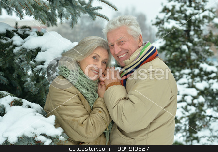 senior couple at winter outdoors stock photo, Portrait of a happy senior couple at winter outdoors by Ruslan Huzau