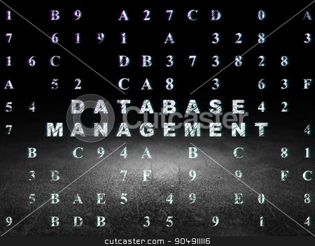 Software concept: Database Management in grunge dark room stock photo, Software concept: Glowing text Database Management in grunge dark room with Dirty Floor, black background with Hexadecimal Code by mkabakov