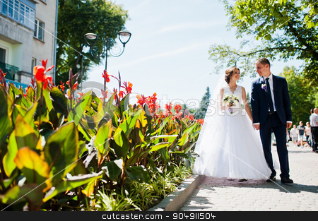 Wedding couple walking on streets of city with with lawns of red stock photo, Wedding couple walking on streets of city with with lawns of red flowers by Andrii Shevchuk