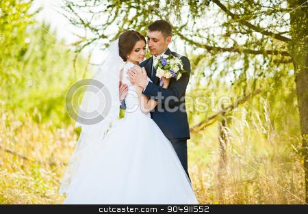 Newlywed in love near green bush stock photo, Newlywed in love near green bush by Andrii Shevchuk