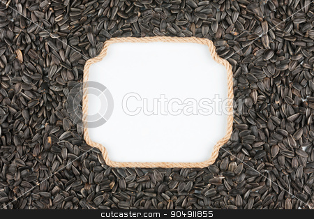 Figured frame made of rope with  sunflower seeds  lying on a whi stock photo, Figured frame made of rope with  sunflower seeds  lying on a white background, with place for your text, graphics by alekleks