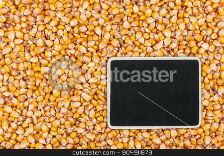 Pointer, the price tag lies on  corn stock photo, Pointer, the price tag lies on  corn, with space for your text by alekleks