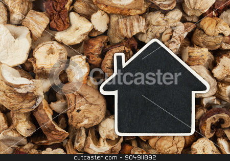 House pointer, the price tag lies on  dried  mushroom stock photo, House pointer, the price tag lies on  dried  mushroom,  with space for your text by alekleks