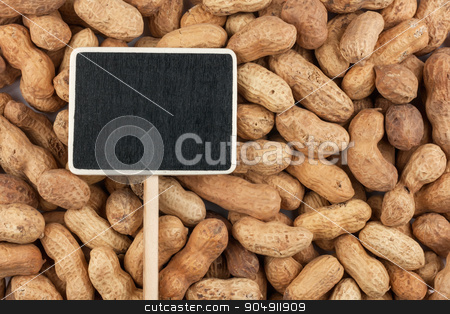 Pointer the price tag lies on peanuts stock photo, Pointer the price tag lies on peanuts, with space for your text by alekleks