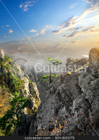 Fog in canyon stock photo, Bird over fog in mountain canyon at sunrise by Givaga