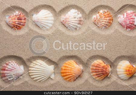 Seashells in the sand stock photo, Seashells in the sand, with space for your text by alekleks