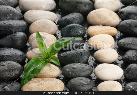 zen stones and leaf with water drops stock photo, zen stones and leaf with water drops by alekleks