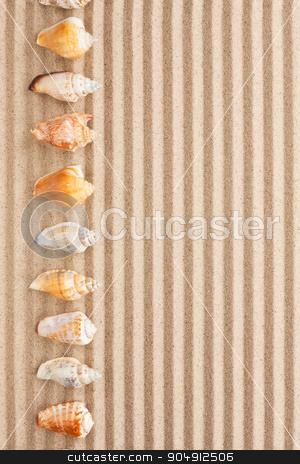 Sea shells  lie on the sand stock photo, Sea shells  lie on the sand, can be used as background by alekleks