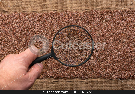 Man's hand with magnifying glass over flax stock photo, Man's hand with magnifying glass over flax and burlap by alekleks
