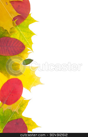 Red and yellow leaves  stock photo, Red and yellow leaves isolated on white background by alekleks