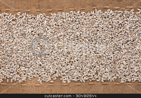 Peeled sunflower seeds lying on sackcloth between the lines stock photo, Peeled sunflower seeds lying on sackcloth between the lines, can be used as background by alekleks