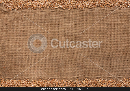 wheat lying on sackcloth  stock photo, wheat lying on sackcloth with space for text by alekleks