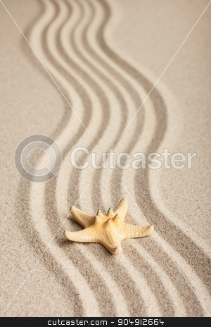 Starfish lying on the sand stock photo, Starfish lying on the sand, can be used as background  by alekleks