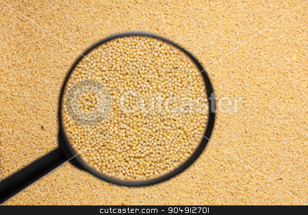 millet with a magnifying glass stock photo, millet with a magnifying glass as the background by alekleks