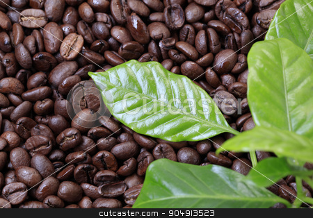 Coffee beans stock photo, Roasted coffee beans and fresh coffee leaves by Digifoodstock