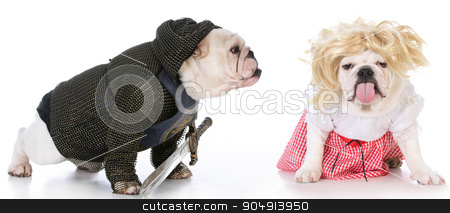 knight and damsel stock photo, bulldogs dressed up like a knight and a damsel in distress on white background by John McAllister