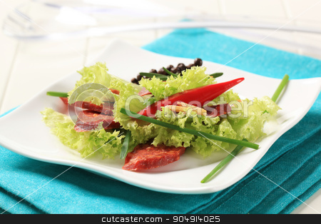 Appetizer stock photo, Fresh lettuce and slices of spicy sausage by Digifoodstock