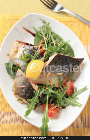 Fish fillets with salad greens and chopped almonds stock photo, Fish fillets on bed of salad greens sprinkled with chopped almonds by Digifoodstock