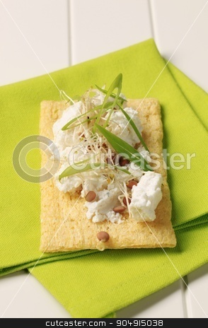Crispbread and cheese stock photo, Crispbread and cheese sprinkled with lentil sprouts and spring onion by Digifoodstock