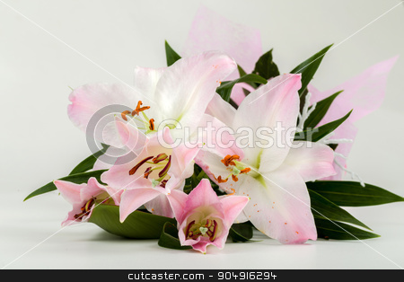 bouquet of pink lily flower stock photo, bouquet of pink lily flower on white background by Artush