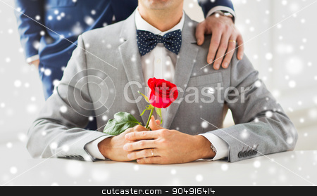 close up of male gay couple with wedding rings on stock photo, people, celebration, homosexuality, same-sex marriage and love concept - close up of male gay couple with red rose flower putting hand on shoulder over snow effect by Syda Productions