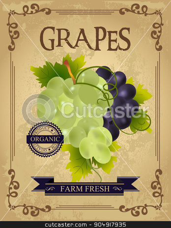 Vintage Fresh Grapes Poster stock vector clipart, Vintage Fresh Grapes Poster. Retro farm fresh grapes design by monicaodo