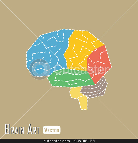 Brain anatomy ( frontal lobe , parietal lobe , temporal lobe , occipital lobe , cerebellum , brain stem ) stock vector clipart, Brain anatomy ( frontal lobe , parietal lobe , temporal lobe , occipital lobe , cerebellum , brain stem ) by stockdevil