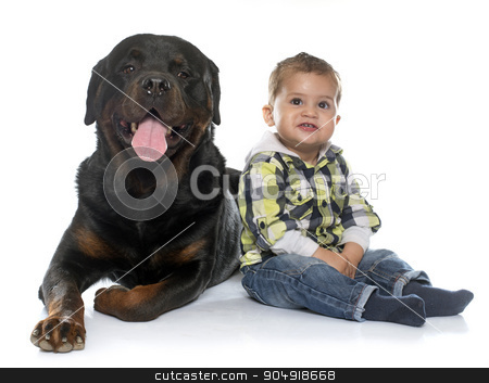 little boy and rottweiler stock photo, little boy and rottweiler in front of white background by Bonzami Emmanuelle