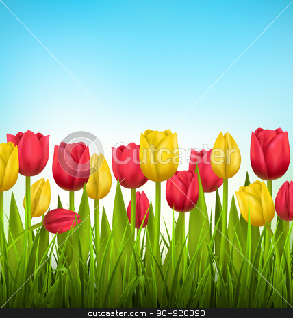 Green grass lawn with tulips on sky. Floral nature flower backgr stock vector clipart, Green grass lawn with yellow and red tulips on sky. Floral nature flower background by Makkuro_GL