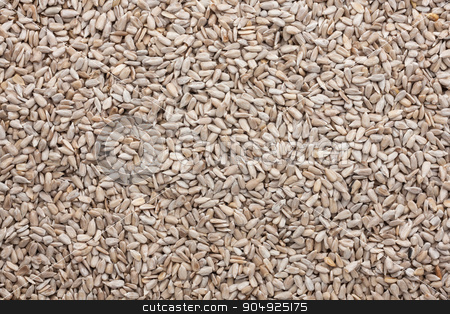 Background out of peeled sunflower seeds  stock photo, Background out of peeled sunflower seeds ,can be used as a texture by alekleks