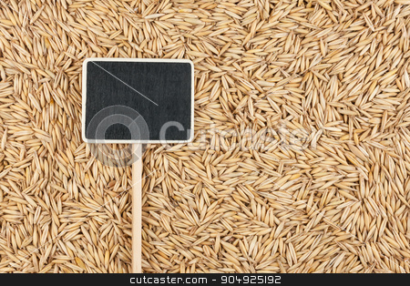 Pointer, the price tag lies on oat stock photo, Pointer, the price tag lies on oat, with space for your text by alekleks