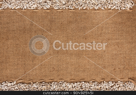 sunflower seeds  were lying on sackcloth stock photo, sunflower seeds  were lying on sackcloth, with space for text by alekleks