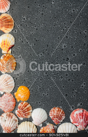 Black background with seashells and water drops stock photo, Black background with seashells and water drops by alekleks