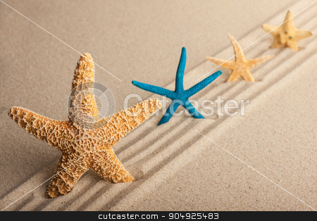 Four starfish in the sand  stock photo, Four starfish in the sand on a background of direct lines by alekleks