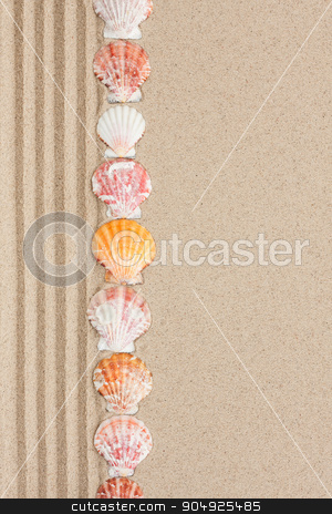 Stripe of seashells lying on the sand stock photo, Stripe of seashells lying on the sand with space for text by alekleks