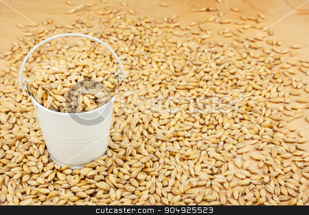 White bucket with barley on the wooden floor stock photo, White bucket with barley on the wooden floor, as a background by alekleks