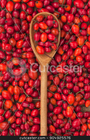 wooden spoon with wild rose  stock photo, wooden spoon with wild rose lies on the background of rose hips by alekleks