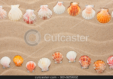 Stripe of sea shells lying on the sand stock photo, Stripe of sea shells lying on the sand, with space for text by alekleks