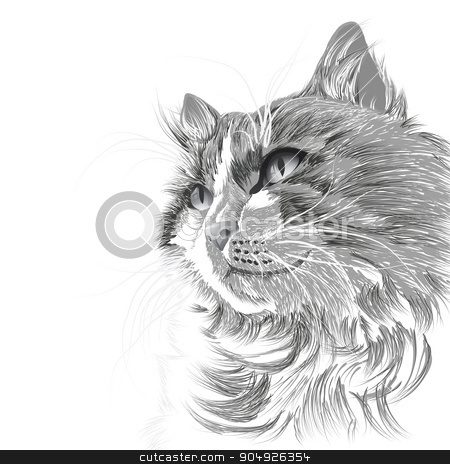 Head of a grey cat stock vector clipart, Illustration head of a grey cat by ElemenTxD